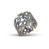 fern_lichens_ring